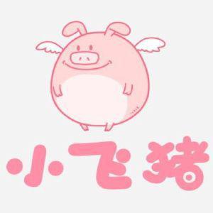 小飞猪创意文化(南京)有限公司