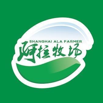 上海凯亦信息科技有限公司-企查查