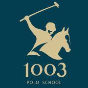 1003 POLO-企查查
