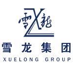 新股提示:雪龍集團(603949)網上發行-企查查